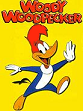 Internet Guide Woody Woodpecker